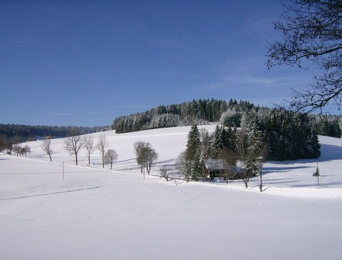 Winter im Tal